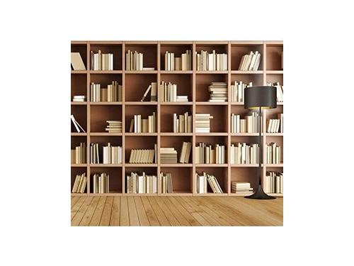 书柜是我们精神粮食的储物柜,详细为你介绍它的一些基本情况